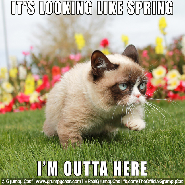 spring-outtahere